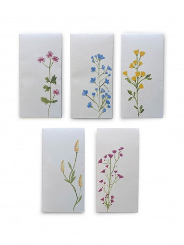 Flowers Envelope Set